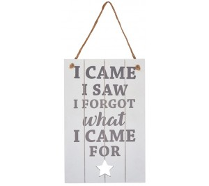 A stylish grey and white toned hanging sign with I came I saw I forgot what I came for text